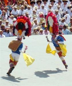 Danza de la Pluma